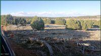 Home for sale: 2553 Birdwing Ln., Clay Springs, AZ 85923