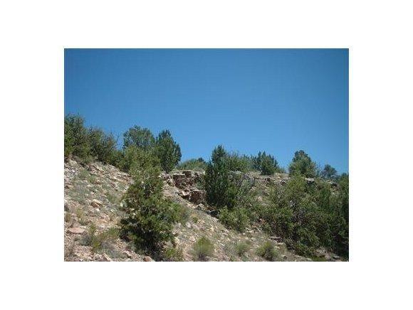 6808 S. Roadrunner Ln., Williams, AZ 86046 Photo 3