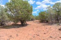 Home for sale: 7742 N. Buck Ridge Rd., Williams, AZ 86046