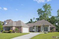 Home for sale: 35398 Oakcrest Ave., Geismar, LA 70734