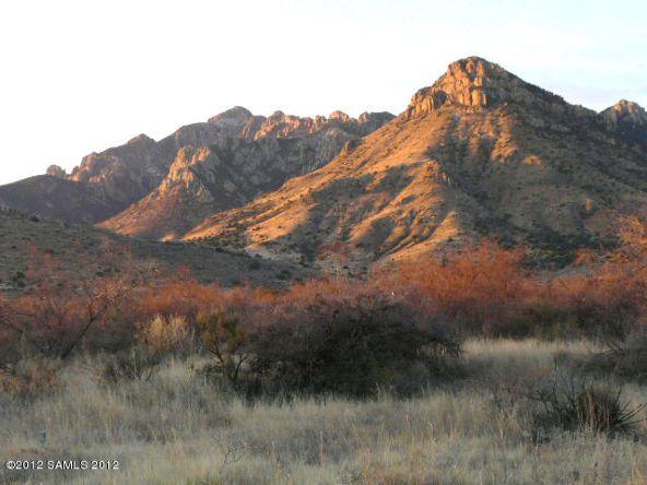1021 W. Deer Rd., Portal, AZ 85632 Photo 9