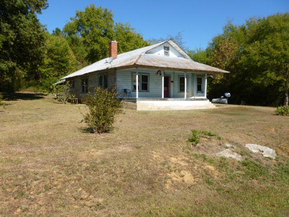 3221 County Hwy. 25, Guntersville, AL 35976 Photo 2