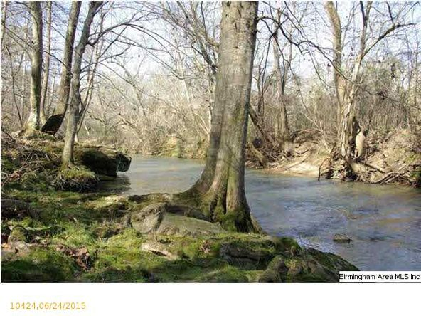 4 Horton Mill Rd., Oneonta, AL 35121 Photo 39