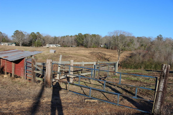 3601 Brookside Rd., Brilliant, AL 35548 Photo 35