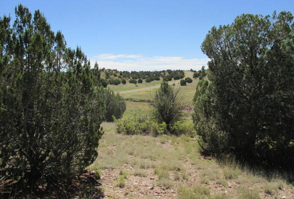 8451 W. Dillon Wash Rd., Prescott, AZ 86305 Photo 11