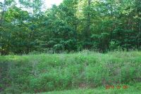 Home for sale: Lot 12 Foxwood Dr., Marion, NC 28752