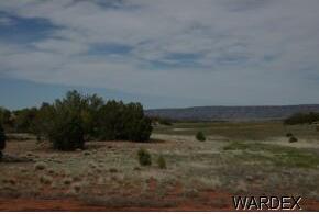 54025 Verde, Seligman, AZ 86337 Photo 1