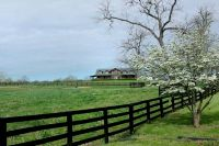 Home for sale: 139 South Taylor Ln., Georgetown, KY 40324