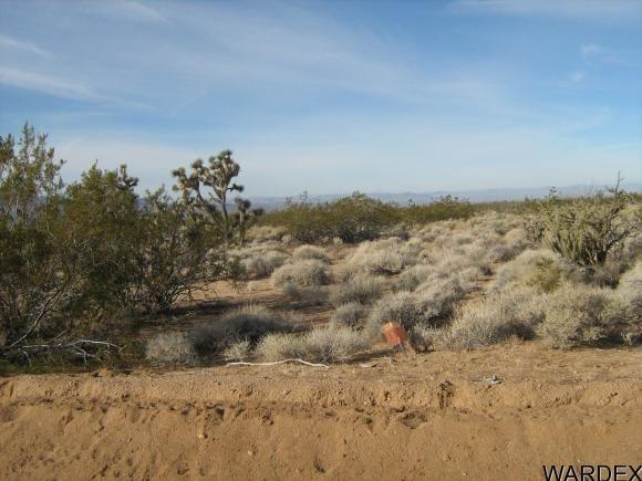 811 Kit Carson, Yucca, AZ 86438 Photo 9