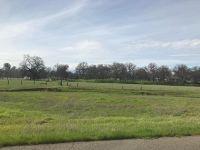 Home for sale: Silver Bridge, Palo Cedro, CA 96073
