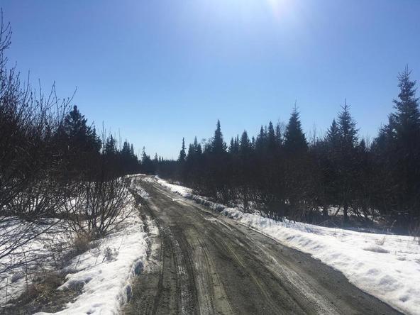 17862 Arcturus Loop, Ninilchik, AK 99639 Photo 40