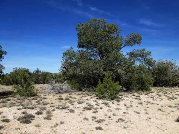 53805 N. Bridge Canyon Pkwy, Seligman, AZ 86337 Photo 5