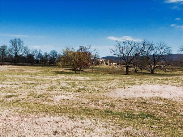 11093 Pickett Ridge Rd., Prairie Grove, AR 72753 Photo 7