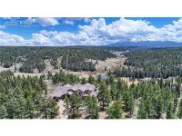 Home for sale: 4145 Omer Rd., Divide, CO 80814
