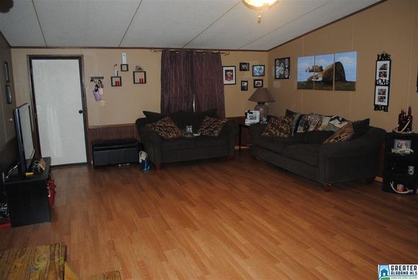 41 Norton Rd., Sylacauga, AL 35151 Photo 47