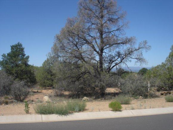 14480 N. Soza Mesa Ln., Prescott, AZ 86305 Photo 10