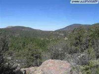 Home for sale: Xx Little Cherry, Pinos Altos, NM 88053