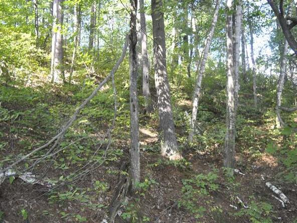 Lot 12 Sunset Dr., Tomahawk, WI 54487 Photo 31