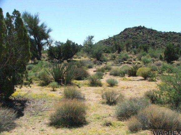 3578-B E. Desert Willow Dr., Yucca, AZ 86438 Photo 4