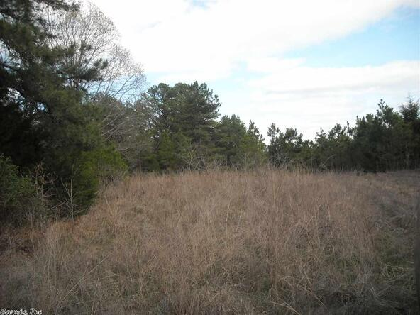 640 Old Gin Rd. W., Bee Branch, AR 72013 Photo 7