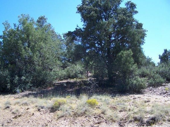 5125 W. Almosta Ranch Rd., Prescott, AZ 86305 Photo 4