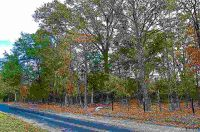 Home for sale: Tbd Lot #1 County Rd. 4114, Pittsburg, TX 75686