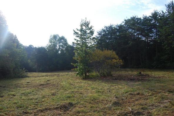 70 County 944 Rd., Mentone, AL 35984 Photo 34