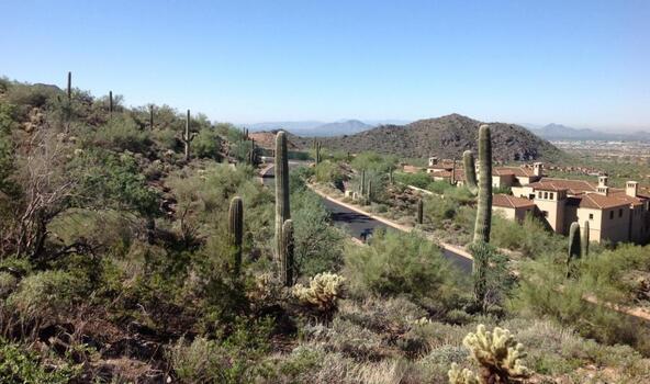 21113 N. 112th St. #1722, Scottsdale, AZ 85255 Photo 14