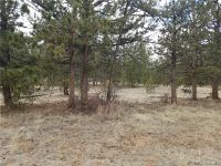 Home for sale: Haystack Rd., Hartsel, CO 80449