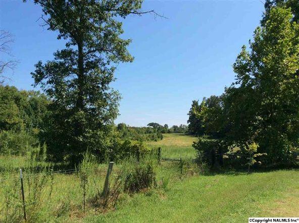 104 County Rd. 338, Moulton, AL 35650 Photo 34