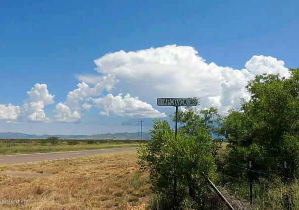 80 Ac On Hwy. 181 And Apodaca, Pearce, AZ 85625 Photo 10