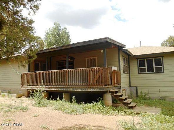 2131 Cottontail Rd., Overgaard, AZ 85933 Photo 5