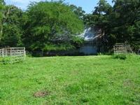 Home for sale: East Farm Rd. 80, Springfield, MO 65803