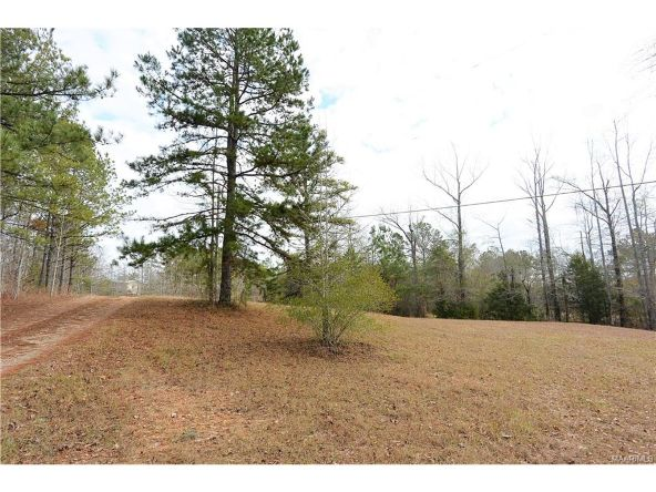 118 Old Colley Rd., Eclectic, AL 36024 Photo 44