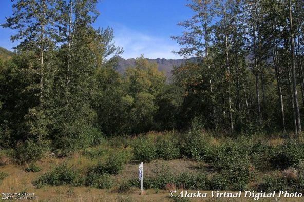 3474 Bear Ridge Cir., Eagle River, AK 99577 Photo 5