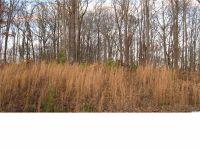 Home for sale: Oak Hill Dr., Remlap, AL 35133