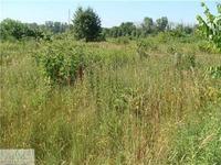 Home for sale: 6871 Battle Creek, Bellevue, MI 49021