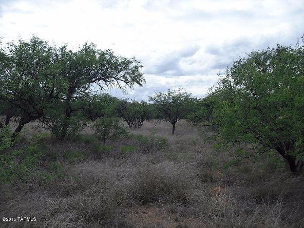 16005 Ranger Rd., Arivaca, AZ 85601 Photo 11