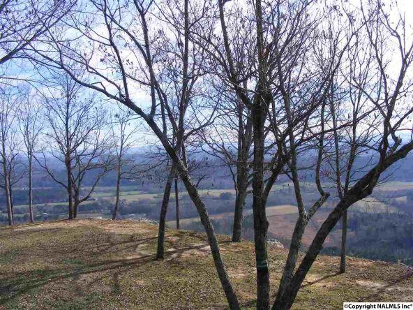 9416 County Rd. 103, Mentone, AL 35984 Photo 5