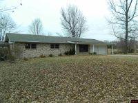 Home for sale: 1162 Mc 7023, Flippin, AR 72634
