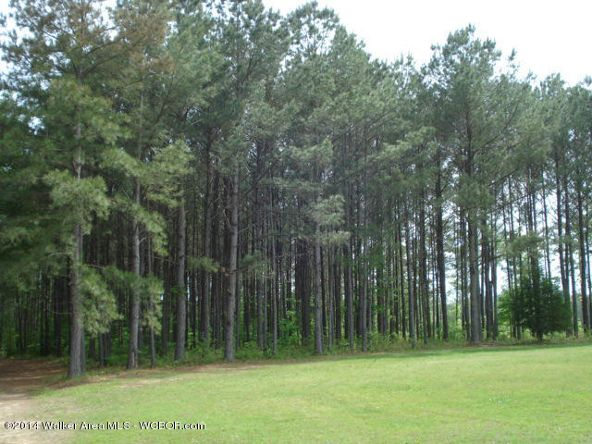 1024 Lost Creek Rd., Carbon Hill, AL 35549 Photo 9