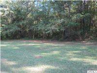 Home for sale: 480 Woodland Parkway, Moundville, AL 35474