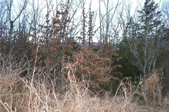 169 N. Skyview Ln., Fayetteville, AR 72701 Photo 3