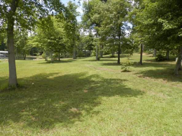 238 Brannon Point Overlook, Arley, AL 35541 Photo 19