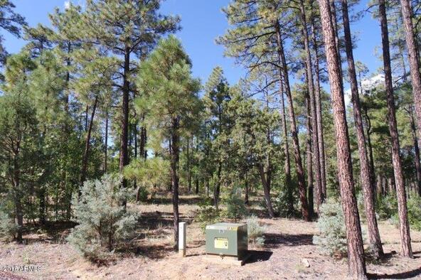 2850 W. Richardson Ln., Lakeside, AZ 85929 Photo 7