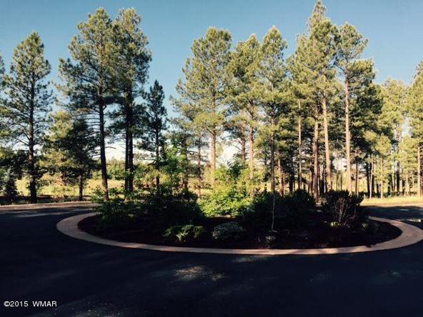 9580 Sierra Springs Way, Pinetop, AZ 85935 Photo 15