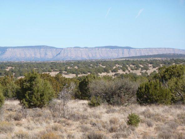 45678 N. Peaceful Hill Rd., Seligman, AZ 86337 Photo 3