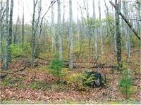Home for sale: 80 Whiteside Trail, Hendersonville, NC 28792