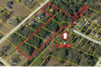 Home for sale: 1 Park St., Saint George, SC 29477