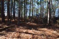 Home for sale: 218 Lakeview Dr., Whispering Pines, NC 28327